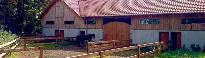 De Paardenboerderij - paardentraining met of zonder pension