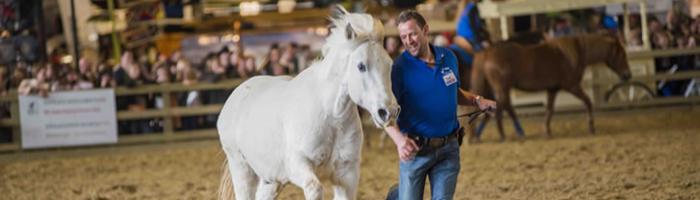 De Paardenboerderij - Flanders Horse Expo