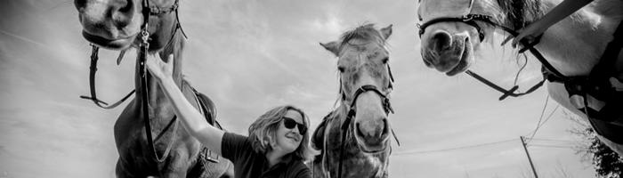De Paardenboerderij - Rechtrichten van Paarden