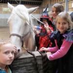 De Paardenboerderij - Kinderkamp krokusvakantie